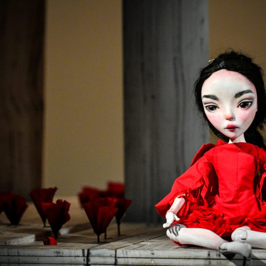 https://www.festivalultanar.ro/wp-content/uploads/2017/10/Scufita-Rosie-foto-Dragos-Dumitru-1-540x540.jpg