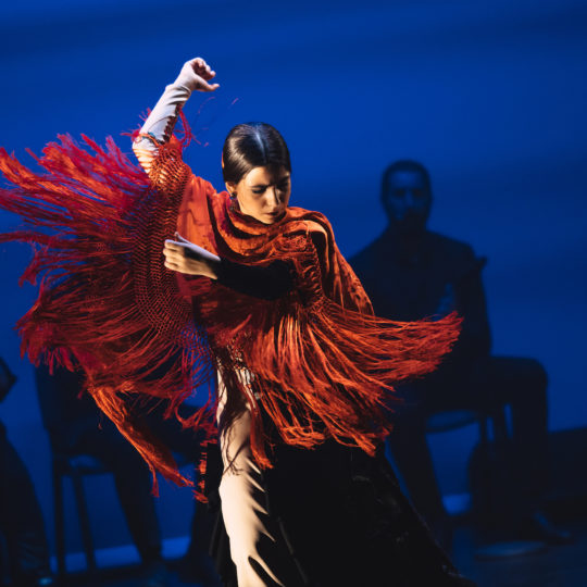 https://www.festivalultanar.ro/wp-content/uploads/2020/03/In-pasi-de-flamenco-cu-Las-Turroneras-Tudor-Troanca-8-540x540.jpg